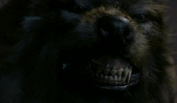Tooth and Claw Werewolf